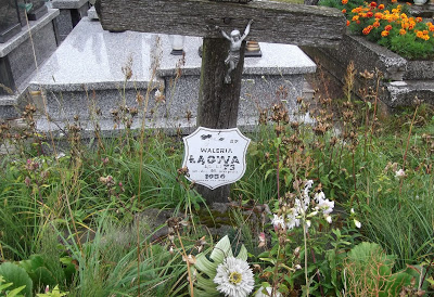 Z witowskiego cmentarza